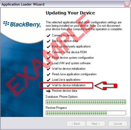 blackberry: wait for device initialization
